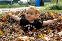 Charlie in the Leaf Pile