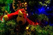 Day 19: Reindeer