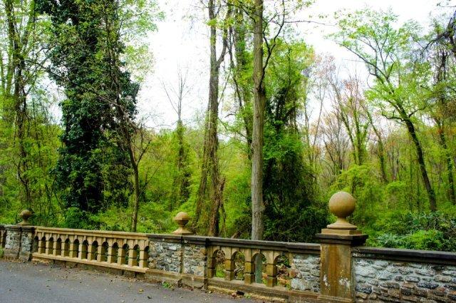 Ridley Creek