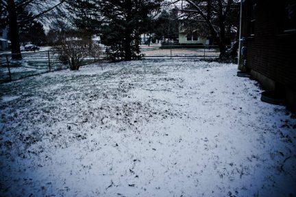 Snowy Earth