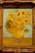 Sunflowers by Vincent Van Gogh 1888 or 1889