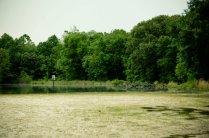 Washington Lake Park