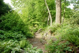Awesome Path