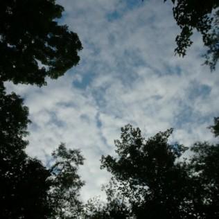 Camping Sky