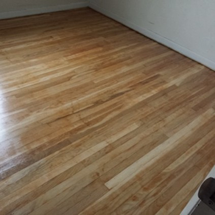 Refinished Floor