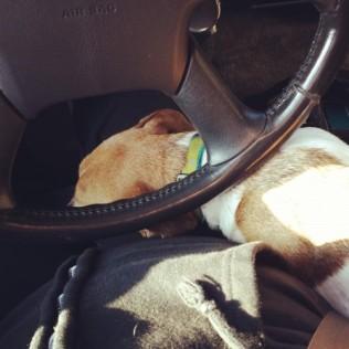 Hard To Drive